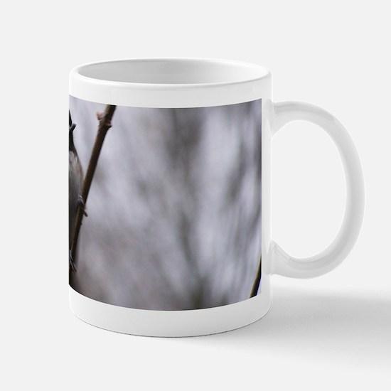 Chickadee Winter Mugs