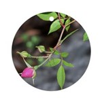 Perfect Pink Bud Ornament (Round)