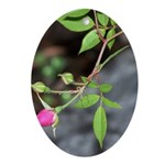 Perfect Pink Bud Ornament (Oval)