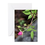 Perfect Pink Bud Greeting Cards
