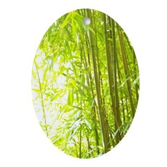 Bamboo Forest Ornament (Oval)