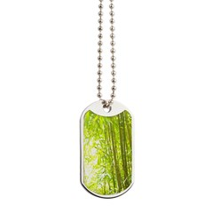 Bamboo Forest Dog Tags