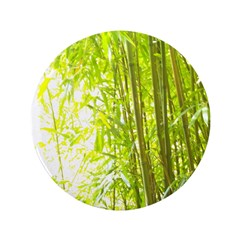 Bamboo Forest 3.5