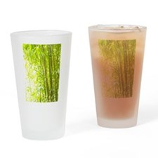 Bamboo Forest Drinking Glass