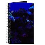 Dark Coral Journal