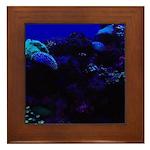 Dark Coral Framed Tile