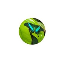 Green Moss Peacock Butterfly Mini Button