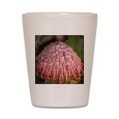 Exotic Shot Glass
