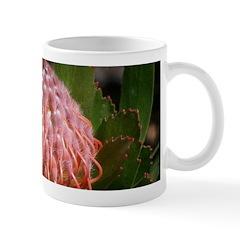 Exotic Mugs