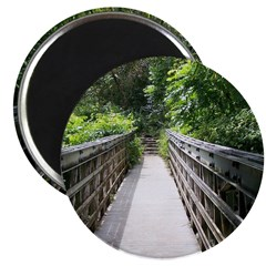 Bridge in the Bamboo Forest Magnets
