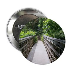 Bridge in the Bamboo Forest 2.25