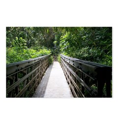 Bridge in the Bamboo Forest Postcards (Package of