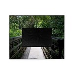 Bridge in the Bamboo Forest Picture Frame