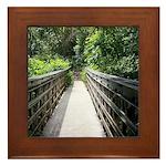 Bridge in the Bamboo Forest Framed Tile
