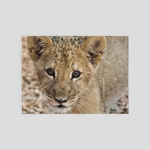 lion cub 5'x7'Area Rug