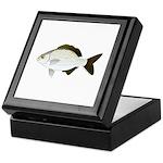 Bermuda Chub Keepsake Box