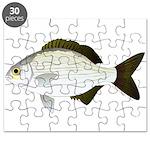 Bermuda Chub Puzzle