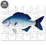 Blue Sea Chub Puzzle