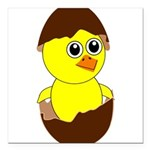 Newborn Chick with Chocolate Egg Square Car Magnet