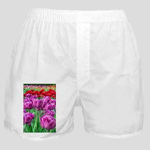 Tulip Field Boxer Shorts