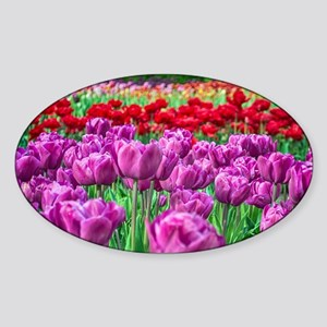 Tulip Field Sticker
