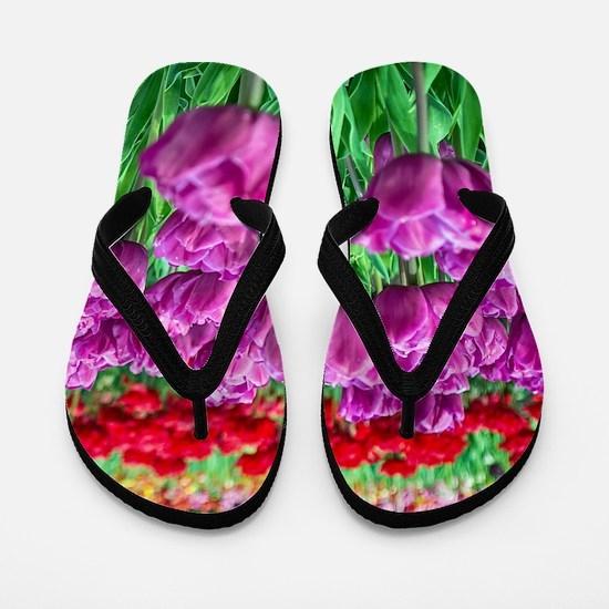Tulip Field Flip Flops