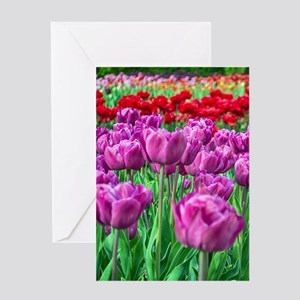Tulip Field Greeting Cards