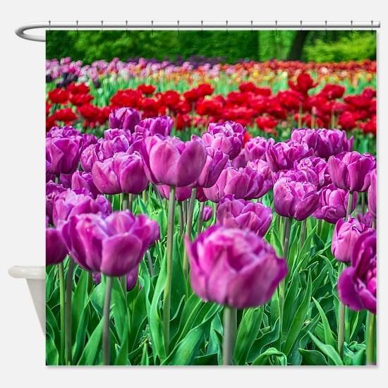 Tulip Field Shower Curtain