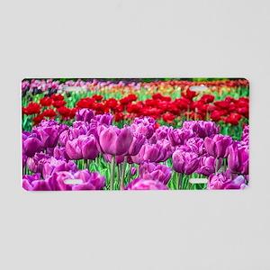 Tulip Field Aluminum License Plate
