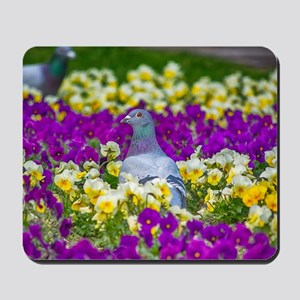 Pigeon and Pansies Mousepad