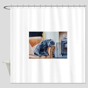 Sleeping Lab Shower Curtain