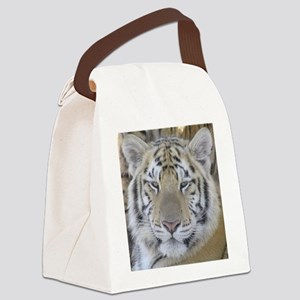 Nero Canvas Lunch Bag