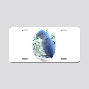 Hyacinth Aluminum License Plate