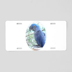 Hyacinth Aluminum License Plate