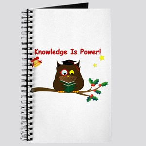 Wise Owl For Christmas Journal