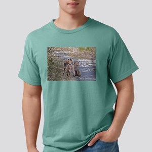 mating foxes Mens Comfort Colors Shirt