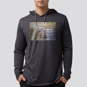 mating foxes Mens Hooded Shirt