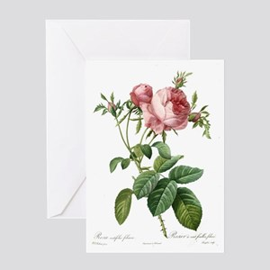 Lovely vintage pink rose  flowers an Greeting Card