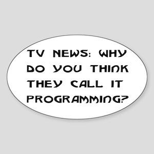 Programming Oval Sticker