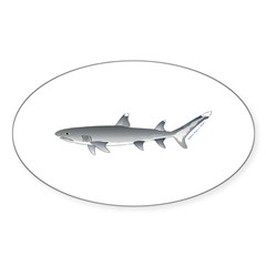 Whitetip Reef Shark Decal