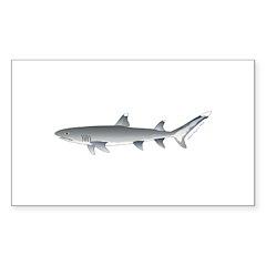 Whitetip Reef Shark Decal