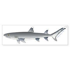 Whitetip Reef Shark Bumper Bumper Sticker
