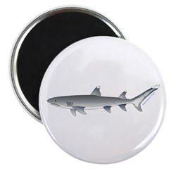 Whitetip Reef Shark Magnets
