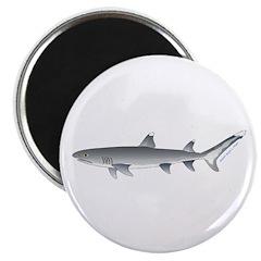 Whitetip Reef Shark Magnets