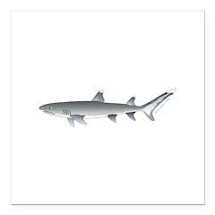 Whitetip Reef Shark Square Car Magnet 3
