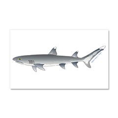 Whitetip Reef Shark Car Magnet 20 x 12