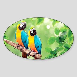 Macaws Sticker