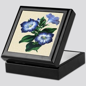 Paxton's Petunia punctata Keepsake Box