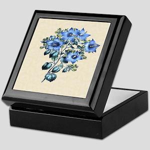 Paxton's Campanula fragilis hirsuta Keepsake Box