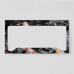 Koi License Plate Holder